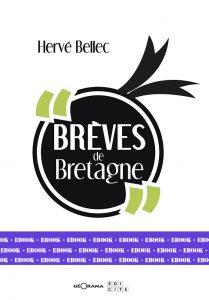 BRÈVES DE BRETAGNE-Numérique